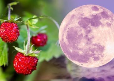 Full Moon 2019: What is a Strawberry Moon? The meaning behind June 2019 full moon, and when to see it
