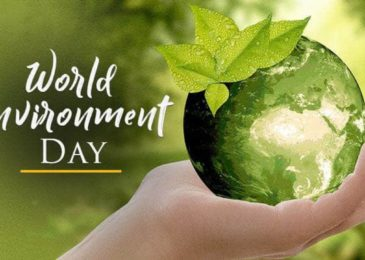 World Environment Day 2019: Why It Is celebrated, This Year's Theme and Significance