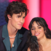 Camila Cabello and Shawn Mendes – Inside Their Plans For Thanksgiving And Christmas!
