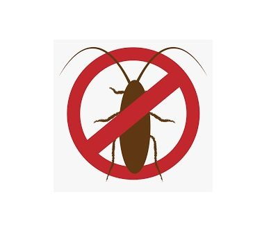 What to consider while finding Pest Control Company?