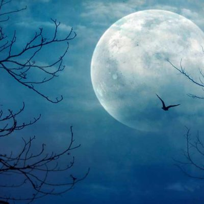 Halloween blue moon 2020: See the October's full moon tonight