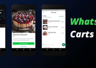 Facebook include to 'carts' feature to WhatsApp to make shopping simpler
