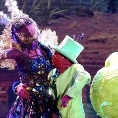 'The Masked Dancer' Discloses Identity of the Moth: Here's the Star Behind the Mask